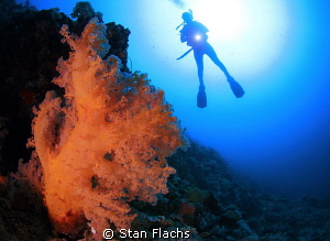 At 30+ meters by Stan Flachs